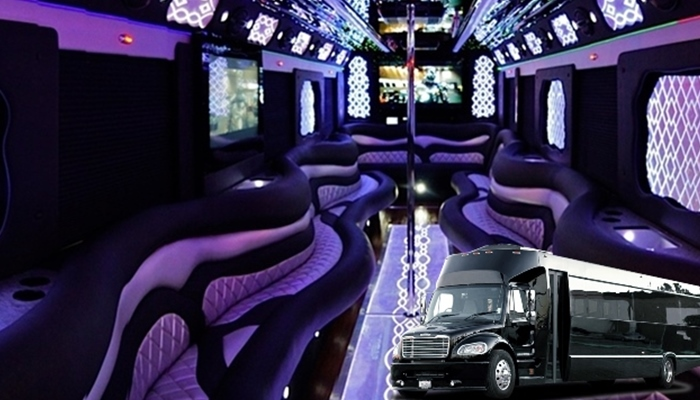 Affordable Party Buses in Chicago, IL